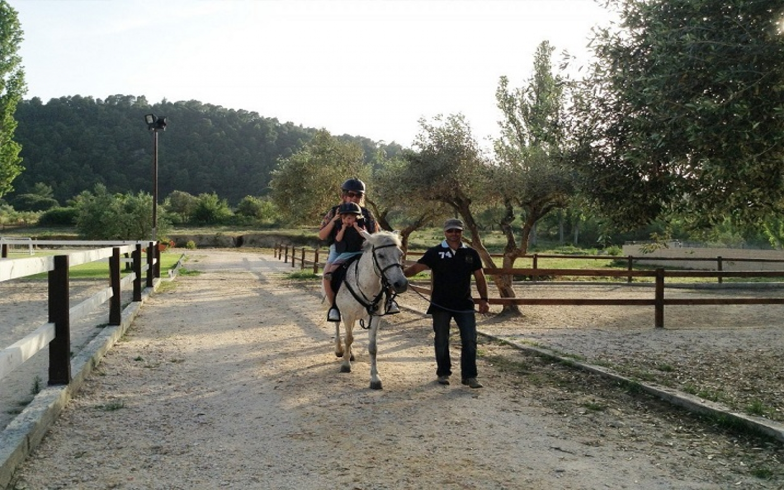 Wine tourism and Horseback Riding in Sithonia